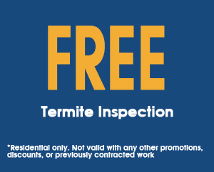 Free-Termite-Inspection